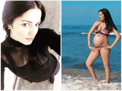 Celina Jaitly Shows Off Her Baby Bump By The Beach View Picture