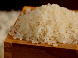 How Identify Plastic Rice Read Here In Gujarati