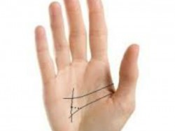 Palmistry What Is The Meaning Sun Line