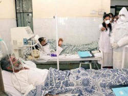 Swine Flu Within Day 17 More Patient Died Gujarat