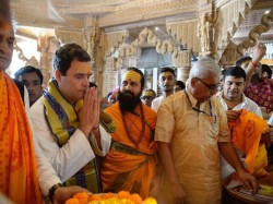 Congress Vice President Rahul Gandhi Visited Temple In Ahmedabad