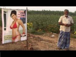 Farmer Andhra Pradesh Puts Up Sunny Leone Poster Keep His Crop Safe