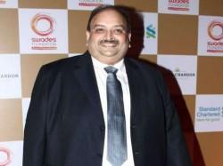Ed Attaches 41 Properties Worth Rs 1217 20 Crore Mehul Choksi
