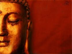 Buddha Purnima 2018 Do Or Dont Money