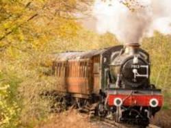 Heritage Train Run Gir Forest