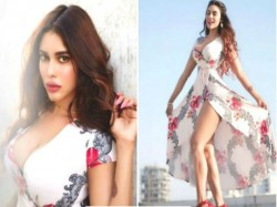 Bigg Boss 9 Contestent Gizele Thakral Posted Bold Pic