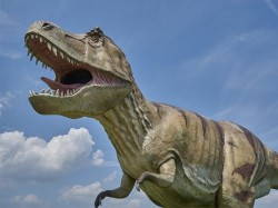 Know About Your Personality Through Dinosaur Test