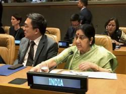 Foreign Minister Sushma Swaraj Snubs Pakistan Leaves Saarc M
