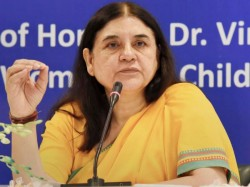 Metoo Maneka Gandhi Says There Should Be An Investigation