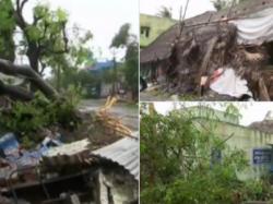 Tamil Nadu Trees Uprooted Houses Damaged Nagapattinam