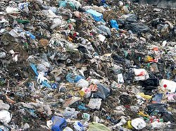 Amc Won T Collect Waste From December If It Is Not Separated