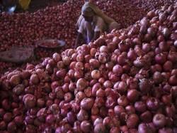 Maharashtra Onion Farmer Gets 1064 Selling 750 Kg Onion
