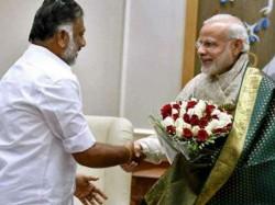 After Maharashtra Bjp To Aim Alliance In Tamil Nadu Pm Modi Piyush Goyal To Take Lead