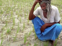 Debt Ridden Up Farmer Returns 2000 Received From Pm Scheme And Asks For Euthanasia