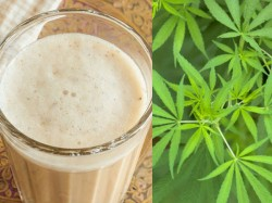What Is The Side Effect Consuming Overdose Bhang Holi