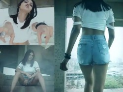 Bold Actress Sherlyn Chopra S Rap For Vote Appeal