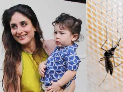 Kareena Protects Taimur From Mosquitoes Using These Home Remedies