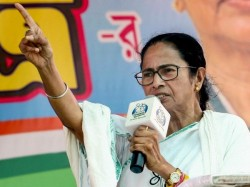 West Bengal Cm Mamata Banerjee And Her Leader Changes Profile Picture After Kolkata Violence