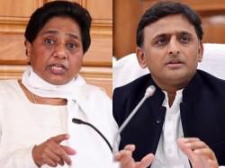 Lok Sabha Elections 2019 Exit Poll India Tv Cnx Results