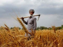 Farmers In This State Will Get Rs 12 500 Every Year