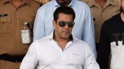 Salman Khan Acquits By Jodhpur Court In Submitting Fake Affidavit In Black Buck Poaching Case
