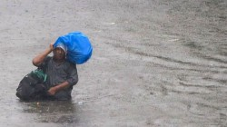 Monsoon Reached Rajasthan Heavy Rainfall Expected Over In These States Be Alert Says Imd
