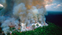 Amazon Fires Boeing Plane Dumping Water To Control Fire In Amazon