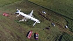 Birds Knocked Both Engine Of Flight Pilot Makes Emergency Landing On Field