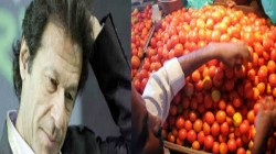 Pakistan Suspended Trade With India Pakistan Import Goods From India