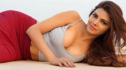 Sherlyn Chopra Shared Hot Video Watch Here