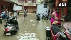 Gujarat Heavy Rains Lead To Flash Floods In Vadodara 6 Dead School College Closed Today