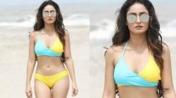 Tridha Choudhury Latest Bikini Pics Goes Viral