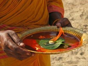 Use Camphor Kapur Become Rich